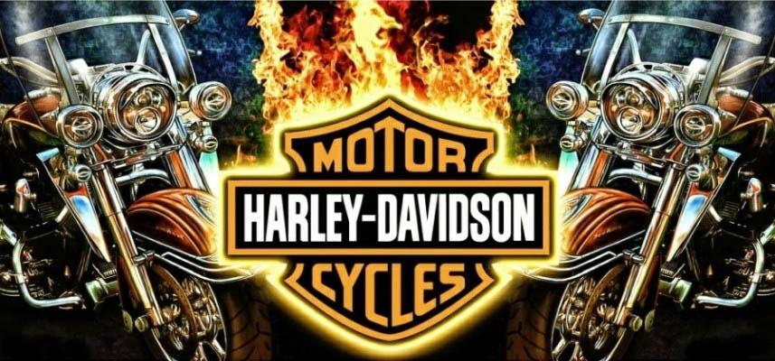 Чашка HARLEY DAVIDSON Fire 0